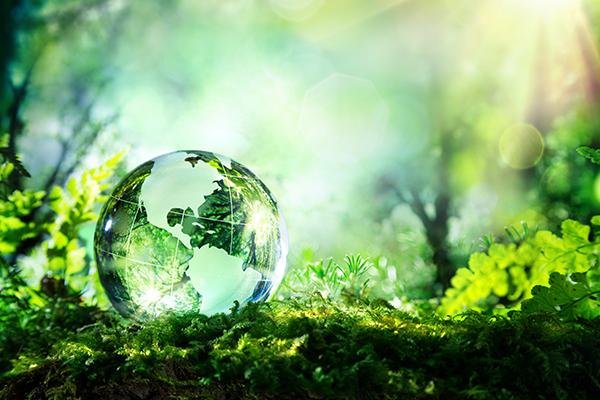 Pilier environnemental